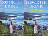 bookchoice originals noortje brink